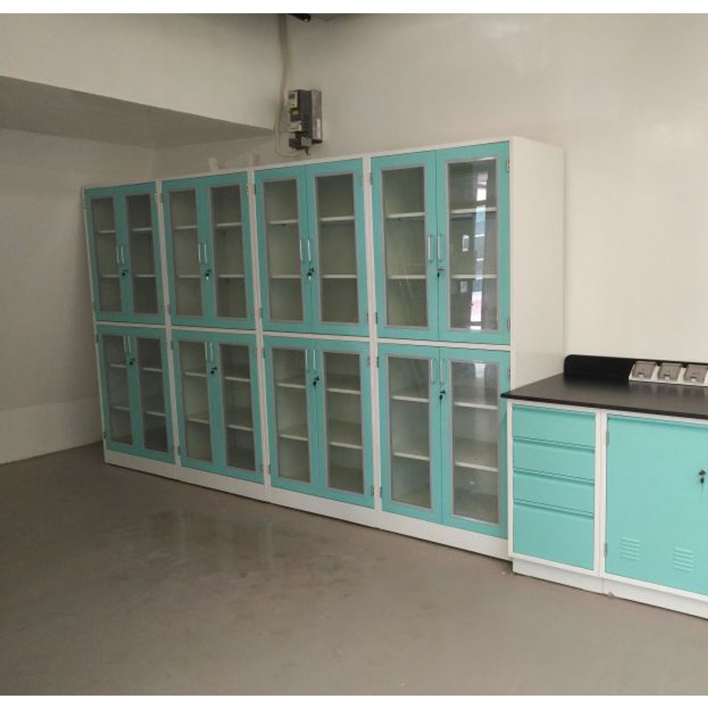 High Standard University Lab Storage cabinet Customization